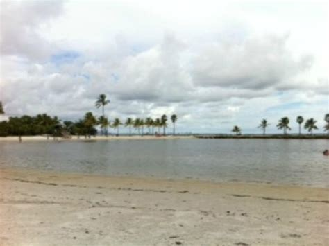 Matheson Hammock Park Map by Matheson Hammock Park Miami 2019 Everything You Need
