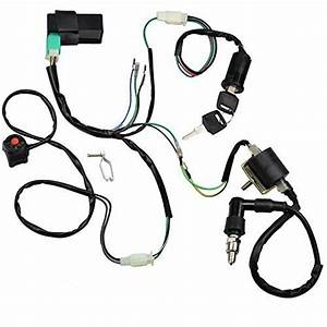 Minireen Wire Harness Wiring Loom Cdi Ignition Coil Spark