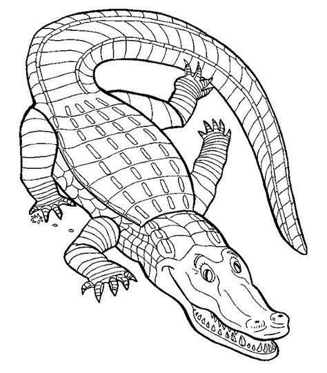 HD wallpapers coloriage crocodile a imprimer gratuit