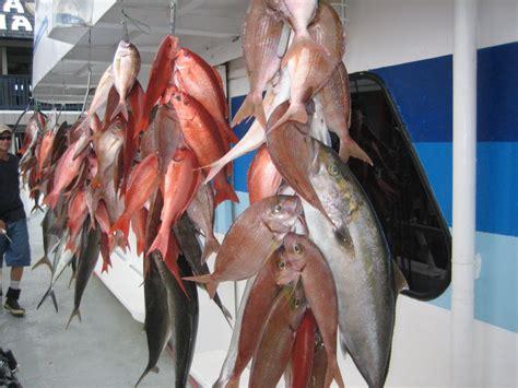 panama city beach florida deep sea fishing charters trips