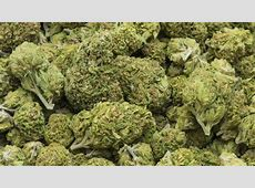 Pediatricians Warn Against Marijuana Use For Kids, Teens