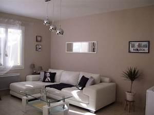 Deco Pour Salon : d co salon taupe blanc noir ~ Premium-room.com Idées de Décoration
