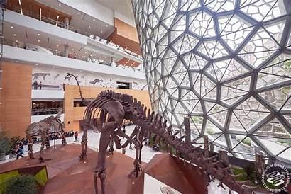 Shanghai History Museum Natural Smartshanghai Museums Promo