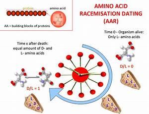 Amino Acid Racemisation