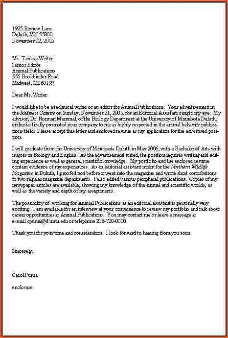 how a business letter should look letters free sle