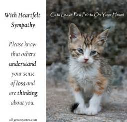loss of a cat quotes cat quotes quotesgram