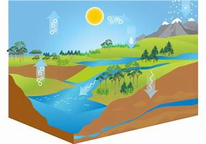 Free Water Cycle Diagram Vector
