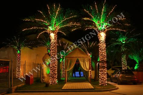 outdoor lighted palm tree home design inspirations