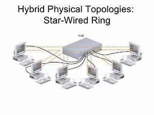 Star Wired Bu Network Topology Diagram