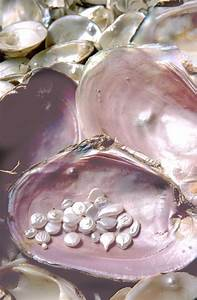 Beautiful, Natural pearls and Pink pearls on Pinterest