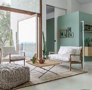 Vert D Eau Couleur : salon tendance mur couleur vert d 39 eau bois blanc ~ Mglfilm.com Idées de Décoration