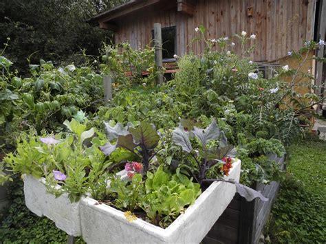 Permakultur Garten Anlegen Tipps Aus Hannes Permagarten