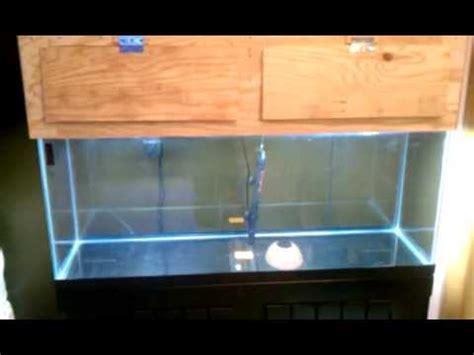 diy  gallon aquarium canopy youtube