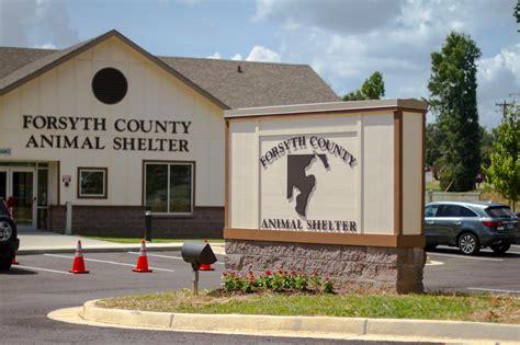 forsyth county animal shelter  supplies cumming ga
