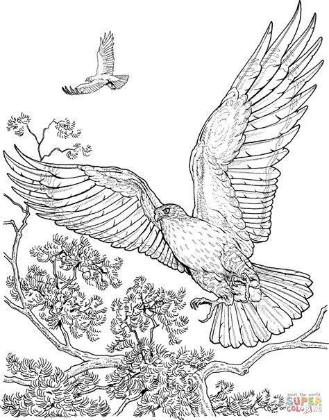 Kleurplaat Garuda by Twee Vliegende Havikken Kleurplaat Gratis Kleurplaten