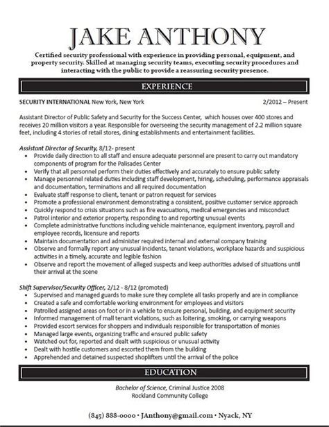Professional Resumes That Stand Out by Professional Resume Design And Writing Career Summary
