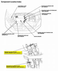 2006 Sierra Trailer Wiring Diagram