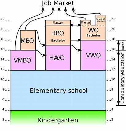 Education Dutch System Netherlands Wikipedia Svg University
