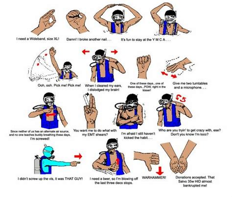 funny scuba hand signals divebuddycom pinterest