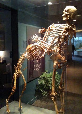 grover krantz donated  body  science