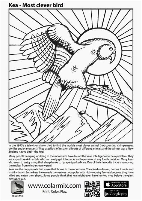 quiver coloring page hasshecom