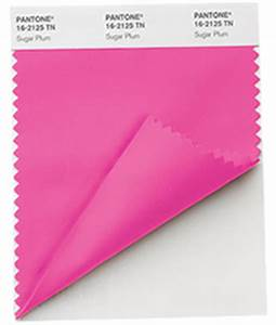 Pantone Nylon Brights Textile Swatch Card