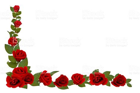 border of roses rose border stock photo 116571034 istock
