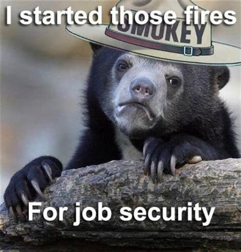 Smokey The Bear Meme - i started those fires for job security smokey the bear know your meme
