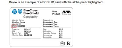 Think of your member id card as your ticket to quality healthcare. Medical Billing and Coding - Procedure code, ICD CODE.: BCBS alpha prefixes list and claim ...