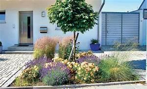 Beetgestaltung Mit Kies : vorgarten gestalten mit kies ~ Whattoseeinmadrid.com Haus und Dekorationen
