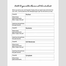 10 Best Images Of Looking Inside Cells Worksheet Answers  Cell Transport Diffusion And Osmosis