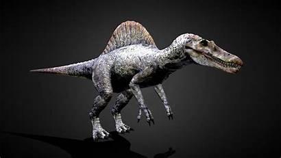 Spinosaurus 4k Wallpaperaccess Wallpapers