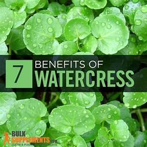 Watercress Extract  Benefits  Side Effects  U0026 Dosage