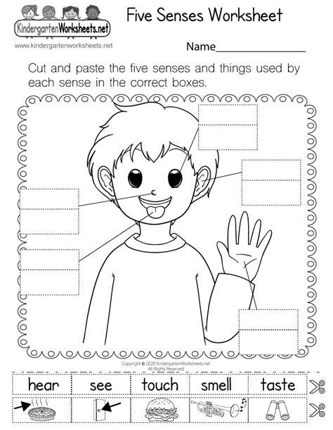 sense worksheet