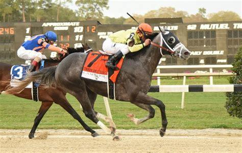 tampa bay downs      run  race