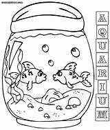 Aquarium Coloring Fish Tank sketch template