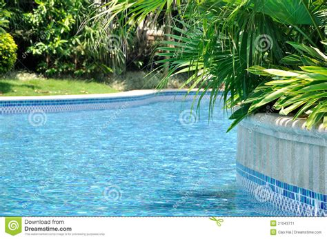plant swimming pool swimming pool and green plant arround stock image image 21043711