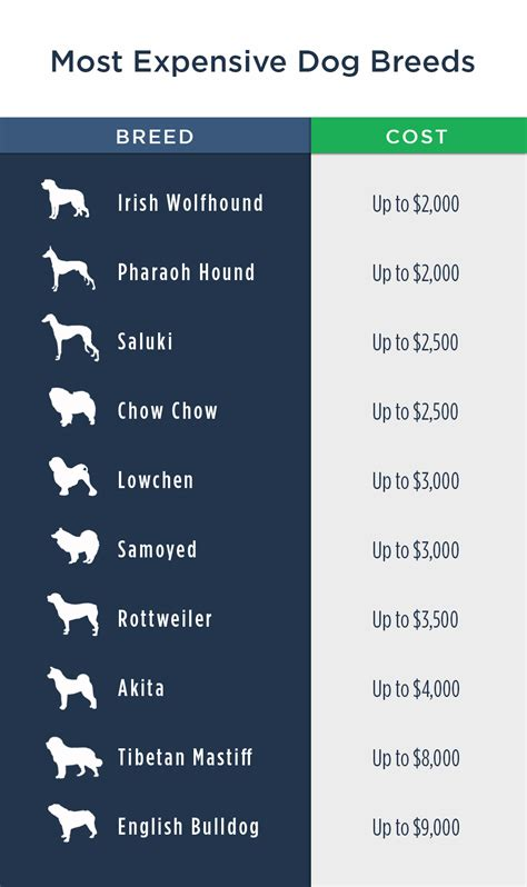 expensive pet cost dog dogs most prices costs breeds breeder money breeders calculator ownership guide many location simple