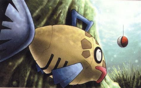 So This Is What Feebas Do