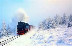 фото лес и поезд