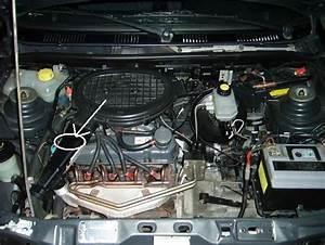 Fuite Liquide Refroidissement : fuite liquide de refroidissement ford fiesta diesel auto evasion forum auto ~ Gottalentnigeria.com Avis de Voitures