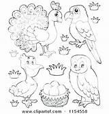 Coloring Royalty Copyright Getcolorings Printable sketch template
