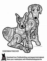 Doberman Coloring Pinscher Pages Designlooter Colouring 35kb 2040 Drawings sketch template