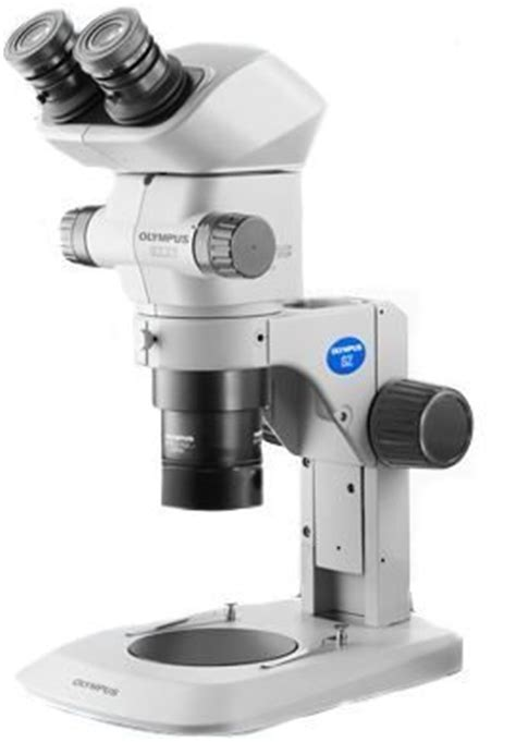 olympus szx   magnification routine stereo