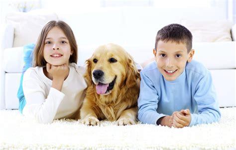 nettoyage tapis blanc conserver la blancheur des tapis