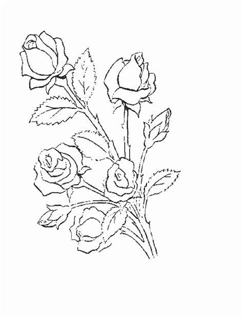 Kleurplaat Acanthus by Vica Weblapgyűjtem 233 Nye G Port 225 L