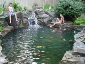 teich design aquariums koi ponds water features lanscaping