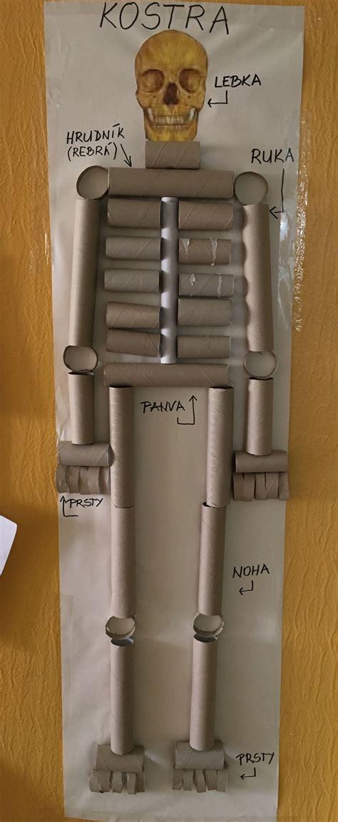 oa 5 crear modelo de esqueleto mediante materiales