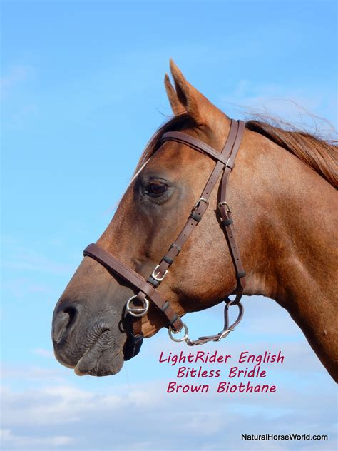 bridle lightrider english bitless bridles horse natural blood draft
