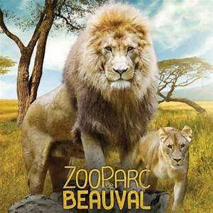 Billet Zoo De Beauval Leclerc : billet zoo de beauval promo billetspro ~ Medecine-chirurgie-esthetiques.com Avis de Voitures